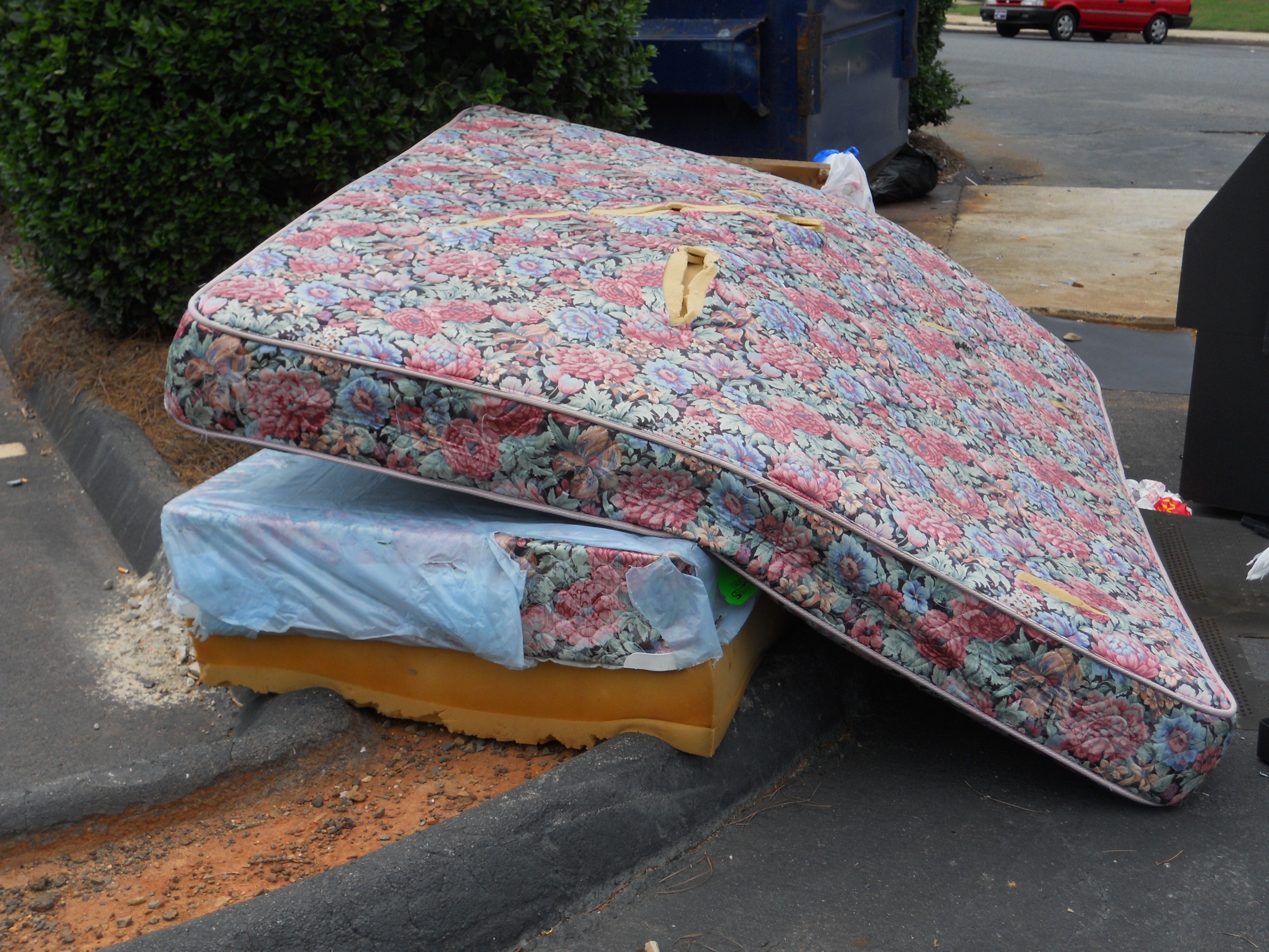 Related Keywords & Suggestions for old mattress